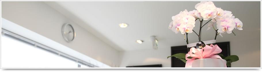 桜新町 歯医者/歯科|デンタルオフィス桜新町 Rotating Header Image